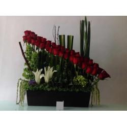 Rosas para tu jardin