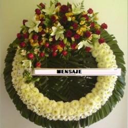 Corona Medallon lilis