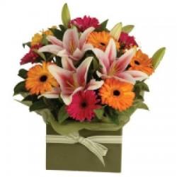 Flowerbox gerberas