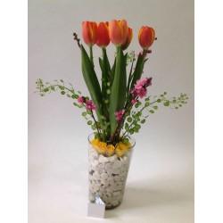 Tulipanes y Piedras