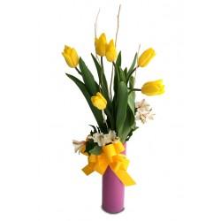 Tulipanes Conquistame